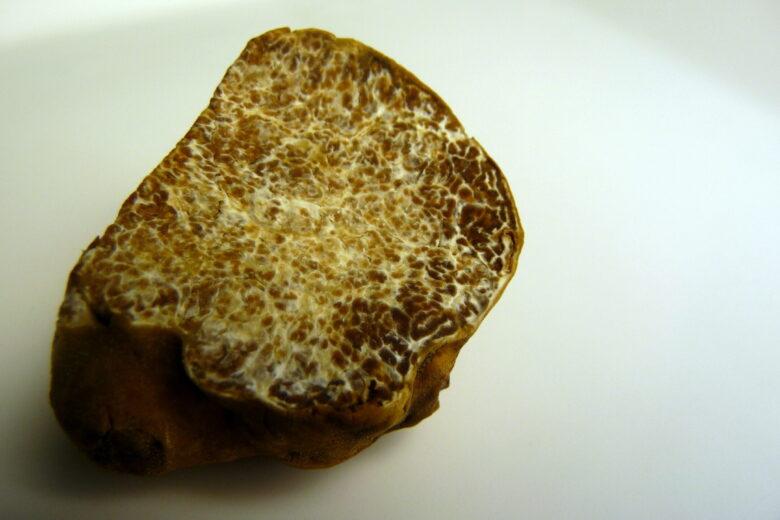 White truffle - Tartufo Bianco